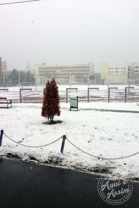 Neve em Timisoara.